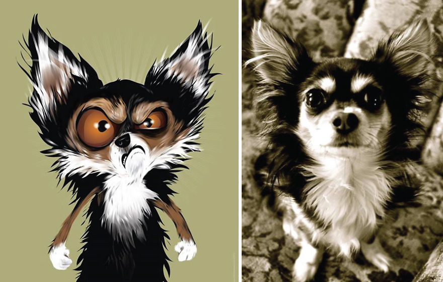 I-draw-pet-portraits-inspired-by-how-their-owners-describe-them-56fe3eb0e8763__880