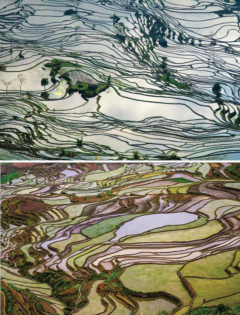 4. Yuanyang Rice Terraces, Yunnan, China_R