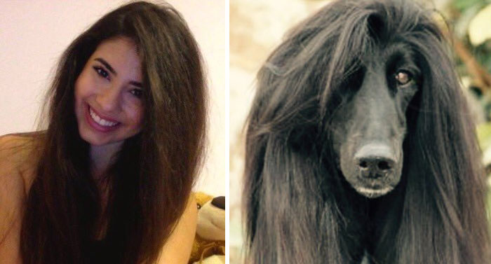 humans-look-like-dogs-doppelganger (12)
