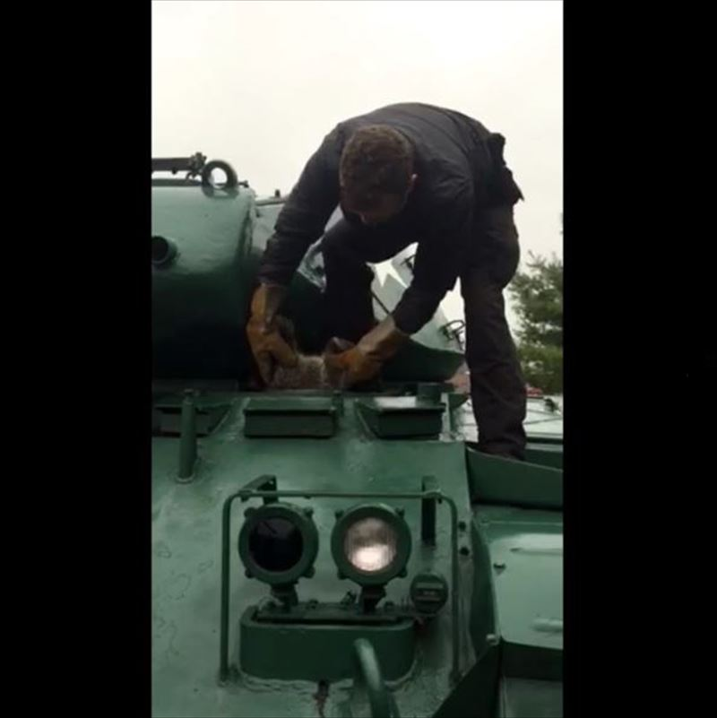 have-you-ever-had-to-remove-a-raccoon-from-an-army-tank-2_r