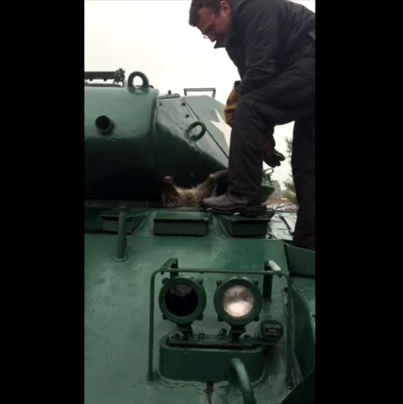 have-you-ever-had-to-remove-a-raccoon-from-an-army-tank-3_r