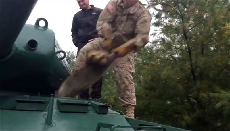 have-you-ever-had-to-remove-a-raccoon-from-an-army-tank-4_r