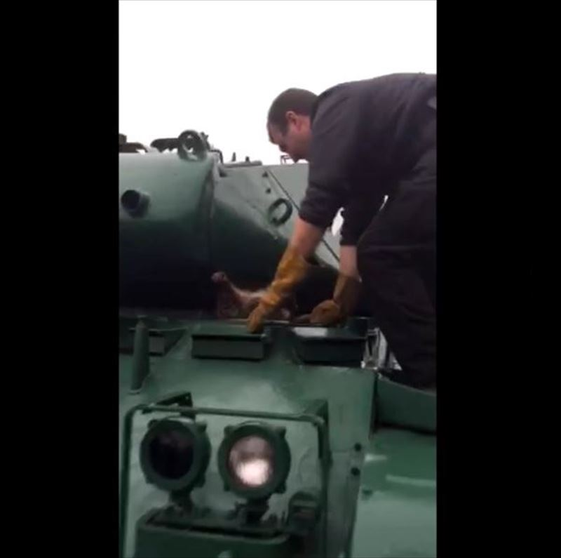 have-you-ever-had-to-remove-a-raccoon-from-an-army-tank_r