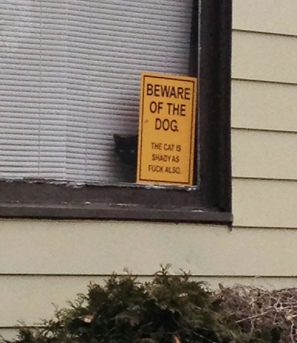 beware-of-the-dog-signs-16