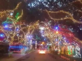 beautiful-christmas-display-near-jupiter-fl_r