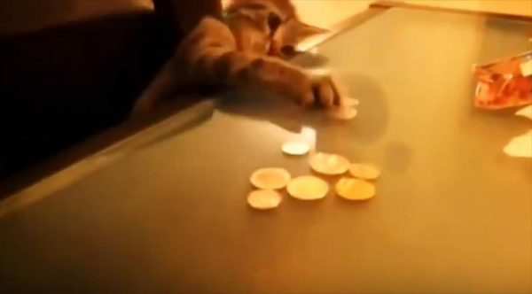 Sneaky Cats Stealing Money Compilation