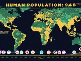 human-population-through-time