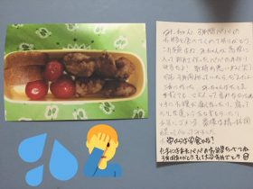 last-boxed-lunch-3