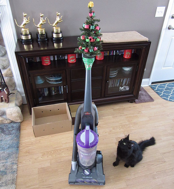 protecting-christmas-tree-from-dogs-cats-pets-1