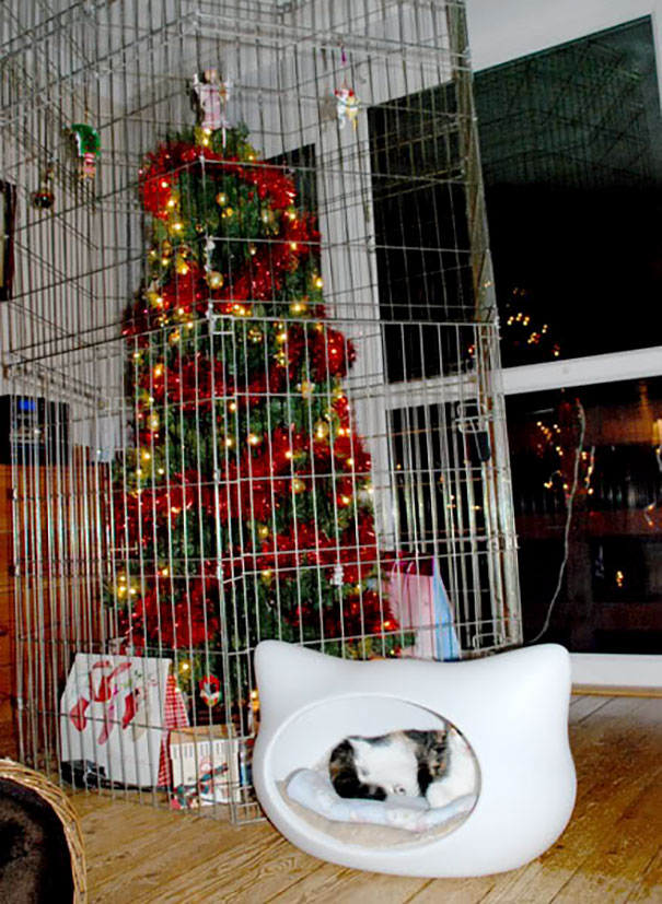 protecting-christmas-tree-from-dogs-cats-pets-16