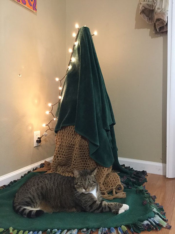 protecting-christmas-tree-from-dogs-cats-pets-23