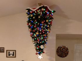 protecting-christmas-tree-from-dogs-cats-pets