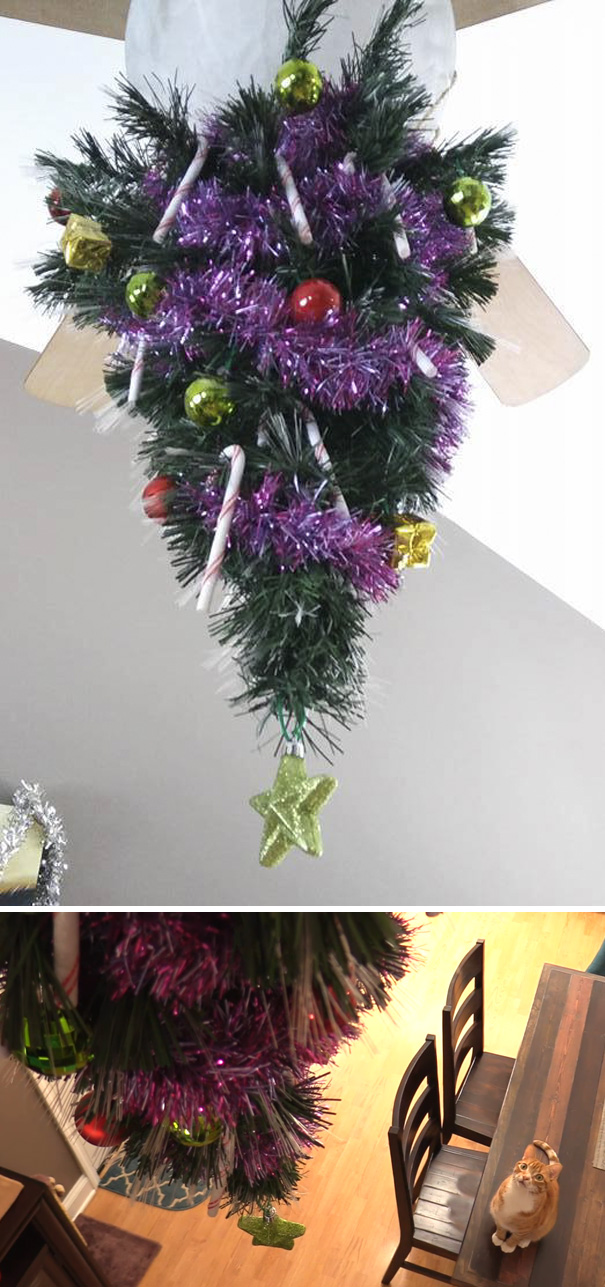 protecting-christmas-tree-from-dogs-cats-pets-3