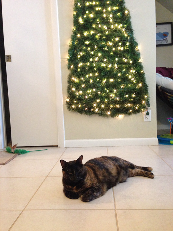 protecting-christmas-tree-from-dogs-cats-pets-6